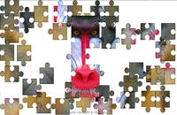 mandrill  Puzzle